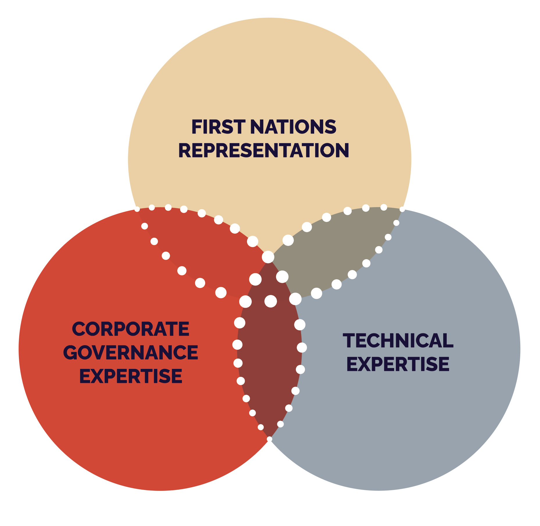 A venn diagram shows First Nations Representation, Corporate Governance Expertise, and Technical Expertise intersecting equally as three large circles
